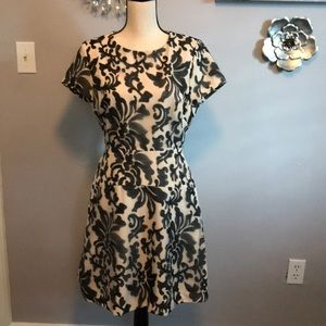Black and cream colored dress NWT